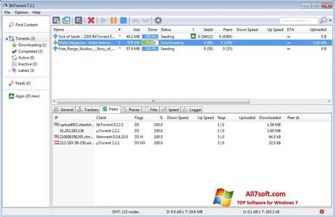 Posnetek zaslona BitTorrent Windows 7
